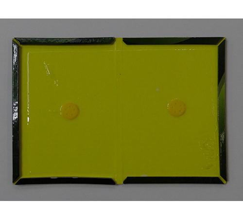 温州奇创电子商务有限公司捷臣驱虫用品丨家庭灭鼠首选粘鼠板