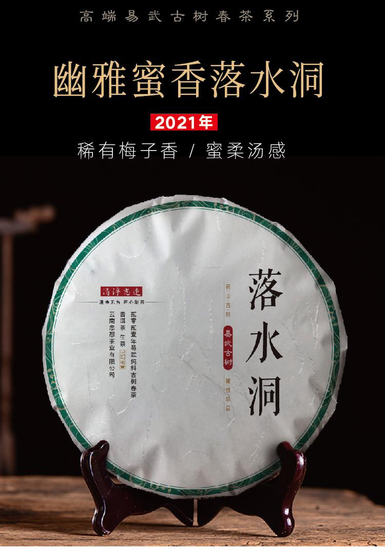 云南忠恕茶业有限公司|清净志远茶叶:普洱熟茶和生茶有什么不同