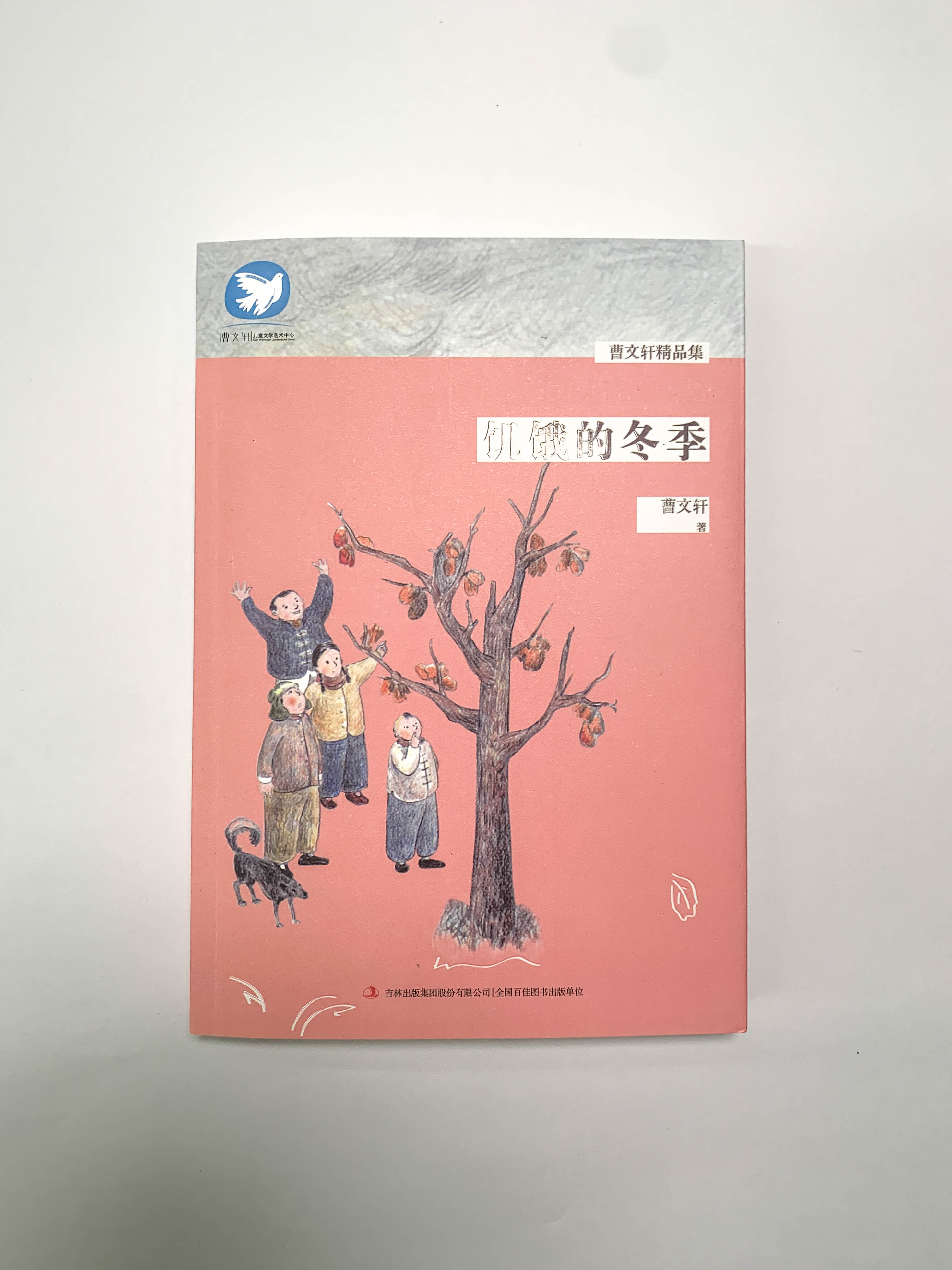 长春市博锐文化传媒有限公司:孩子阅读的两大好处